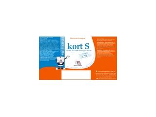 KORT S GEL - Fluido em gel para operações de usinagem
