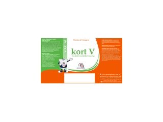 KORT V - Fluido de corte Vegetal